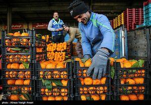 قیمت انواع میوه در بازار +جدول