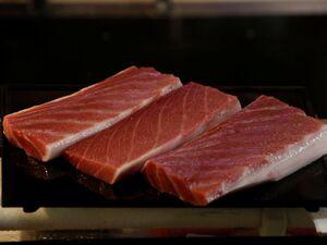 انواع ماهی در غرفههای ترهبار چند؟