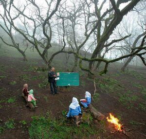 کلاس درس در جنگل