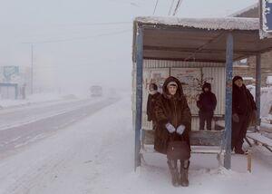 عکس/ زندگی در سردترین نقطه دنیا