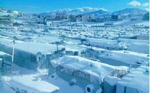 عکس/ اردوگاه برفی پناهندگان سوری در لبنان
