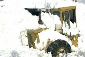 لدر گرفتار در برف