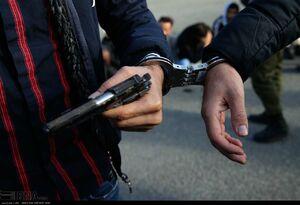 عکس/ بازداشت 46 باند سارقان در تهران