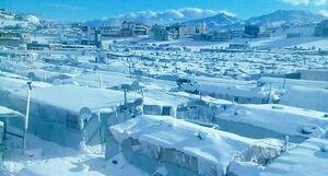 عکس/ بارش سنگین برف در اردوگاه پناهندگان!