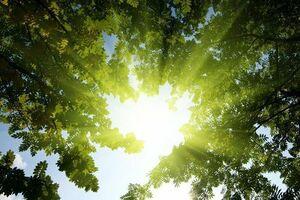 تاثیر نور خورشید بر سلامت روان