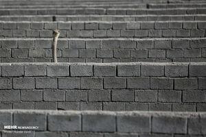 عکس/ کار آفرینی با شترمرغ