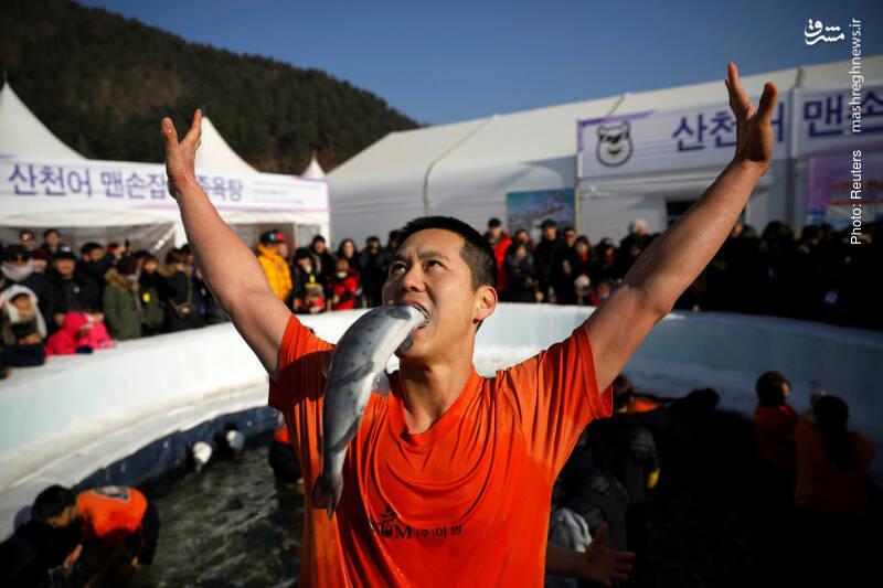 جشنوارههای تفریحی در منطقه غیرنظامی در مرز دو کره