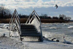 تصاویری زیبا از ساحلی یخزده