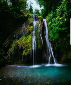 عکس/ تنها آبشار خزهای ایران