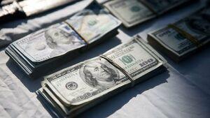 کشف دلارهای قاچاق در گمرک
