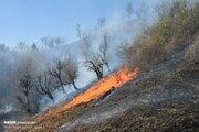 عکس/ آتش سوزی اراضی ملی شهرستان مرزی آستارا