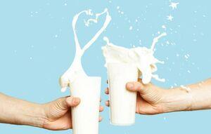 شیر و ماست کم چرب بهتر است یا پر چرب؟