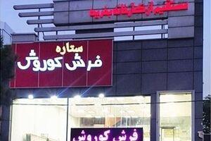 فرش باکیفیت کاشان را به قیمت کارخانه در تهران خرید کنید