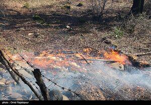 عکس/ آتشسوزی در جنگلهای سیاهکل گیلان