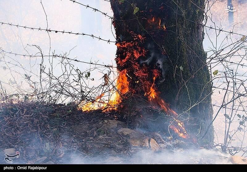 آتشسوزی در جنگلهای سیاهکل گیلان