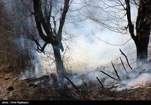 عکس/ آتشسوزی در جنگلهای گیلان