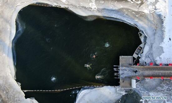 عکس/ شنا در آبهای زیر صفر