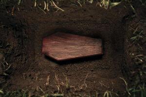 فیلم/ تیراندازی در مراسم تشییع جنازه!