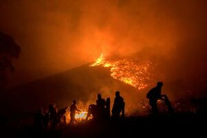 عکس/ آتشسوزی مهیب در آفریقای جنوبی