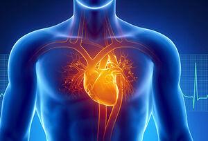 بیماریهای قلبی در افراد «فقیر» بیشتر دیده میشود