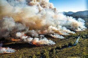 عکس/ موج بیسابقه گرما در استرالیا