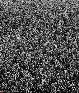 تصویری زیبا از استقبال مردم از امام خمینی هنگام ورود به ایران در ۱۲ بهمن ۵۷