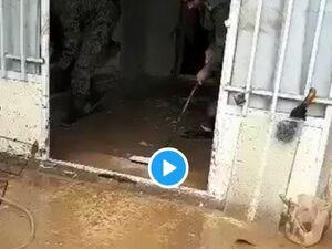 دو پاسدار سپاه در حال چپاول بیت المال +فیلم