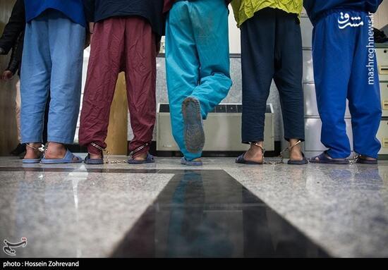 فیلم /بازداشت سارقین کلیپ جنجالی