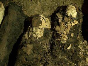 از جسدهای کشف شده باستانی چگونه مراقبت میکنند؟ +فیلم