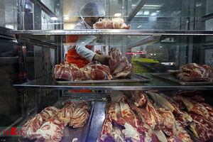 احتکار 7 تن گوشت گوساله دولتی در ستارخان