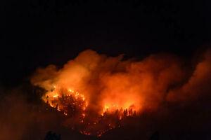 آتش سوزی مهیب در جنگل های شیلی