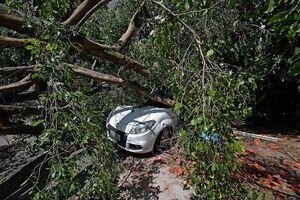 عکس/ خسارت طوفان سهمگین در برزیل