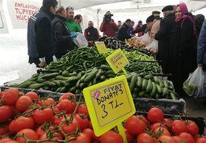 اقدام دولت ترکیه درباره افزایش قیمت میوه و سبزیجات