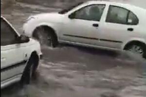 فیلم/ گنبدکاووس پس از بارندگی شدید