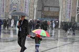 فیلم/ حال و هوای زمستانی حرم امام مهربانیها