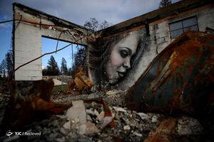 عکس/ بهشتی که خاکستر شد