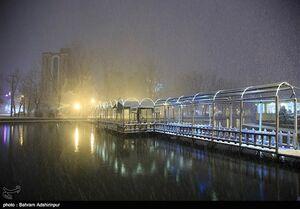 عکس/ شب برفی اردبیل