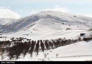 عکس/ بارش برف در ارتفاعات خراسان شمالی