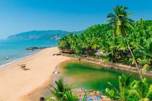 عکس/ زیباترین ساحل هند