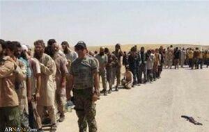 تسلیم دسته جمعی عناصر داعش در باغوز سوریه