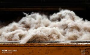 عکس/ کارخانه ساخت کلاه از پوست خرگوش!