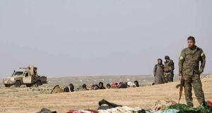 معامله در شرق رود فرات برای نجات مهرههای سوخته داعش/ لحظهشماری شبه نظامیان کُرد برای به جیبزدن دلارهای تروریستها + نقشه میدانی و عکس