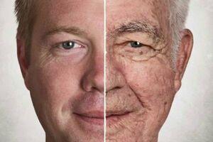 کشف داروی جدید به تعویق انداختن روند پیری