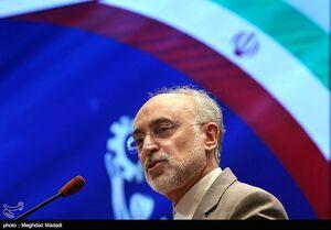 انتقاد صالحی از خرید ارزان برق نیروگاه بوشهر