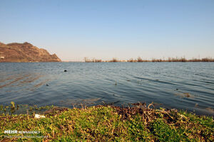 عکس/ افزایش آب تالاب استیل آستارا