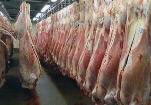 قیمت تمام شده هر کیلو گوشت گوسفندی گرم چقدر است؟ +جدول