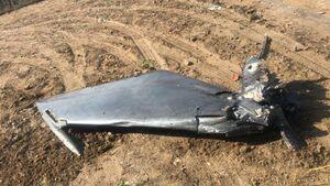 یک جنگنده هند در مرز پاکستان سقوط کرد