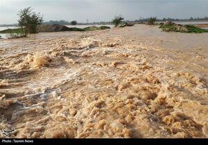 شهادت یک مرزبان بر اثر سیلاب در میرجاوه