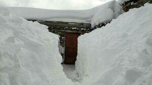 عکس/ ایجاد تونل برفی در دیواندره,