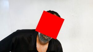 جزئیات دستگیری مدیر اختلاسگر در تهران